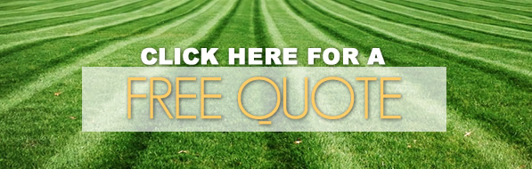 free quote from barbarossa lawn care and landscaping